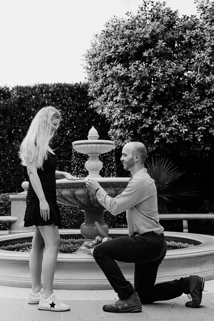 proposal-photoshoot-palm-beach